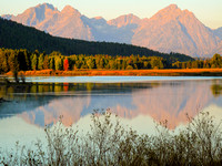 Morning Reflection on the Oxbow Bend, Grand Teton National Park